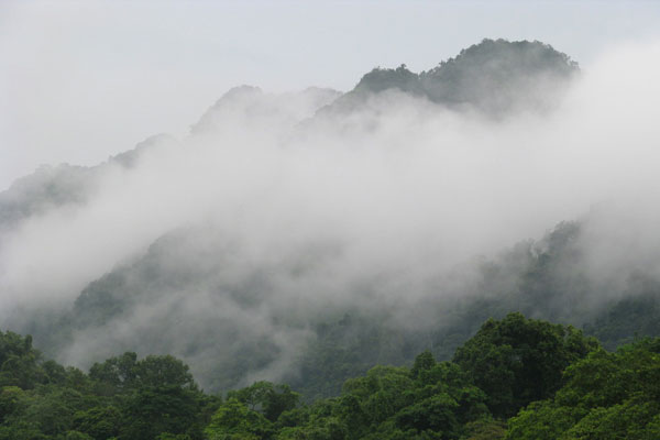 Cuc Phuong National Park Travel Guide